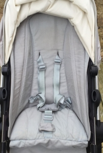 Mouldy Joolz Day Pushchair after professional clean