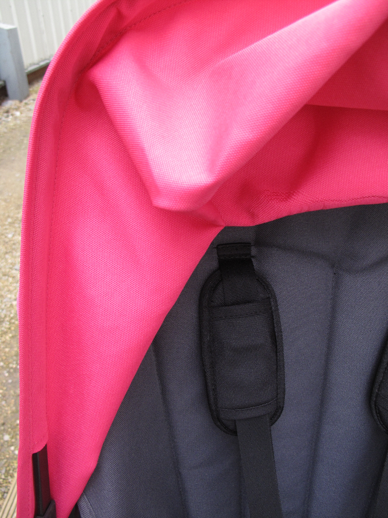 Bugaboo Cameleon (after safe mould treatment & steam clean)