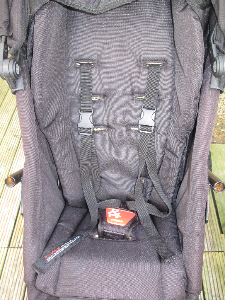 Phil&Teds Explorer Seat After (steam cleaned & treated)