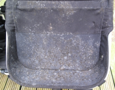 Mouldy Bugaboo pushchair before clean